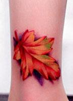 精致的枫叶纹身图案