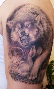 带有野性的狼纹身图案